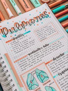 Bullet Journal School, Bullet Journal Banner, Bullet Journal Notes, Bullet Journal Lettering Ideas, Bullet Journal Writing, Bullet Journal Ideas Pages, Bullet Journal Inspiration, Lettering Tutorial, Hand Lettering