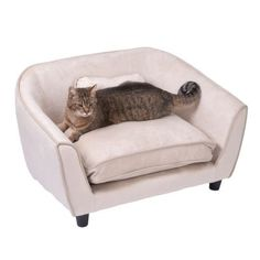 Smartpet Astro Couch beige Tub Chair, Accent Chairs, Lounge, Couch, Beige, Furniture, Home Decor, Chair, Airport Lounge