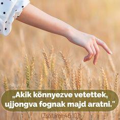 Holding Hands, Faith, Running, Keep Running, Why I Run, Loyalty, Believe, Religion