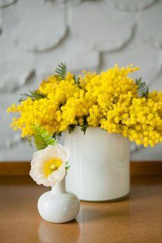 白い艶のある陶器の花瓶にもミモザはお似合いです。 太さのある円柱の花瓶には、花に高さを出さない生け方がおすすめです。