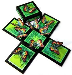 Butterflies and Ferns Magic Box -- Opened