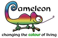 Environmentally friendly products at Cameleon