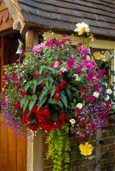 6 Beautiful Hanging Flower Basket Ideas: Full and Lush
