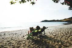 People Lying On Green Wooden Lounger Chairs On Beach  Free Stock Photo