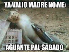 Couldn't wait till saturday lol Funny Spanish Jokes, Mexican Funny Memes, Mexican Humor, Spanish Humor, Funny Jokes, Hilarious, Spanish Quotes, Pepito Jokes, Monkey Memes
