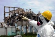 Japan audit: Millions of dollars wasted in Fukushima cleanup on Environmental XPRT