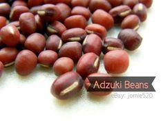Seeds for sale! ✿ Japanese Adzuki Beans/Chinese Red Beans Seeds (Taiyaki Dessert Filling) •Bush Planting Vegetables, Planting Seeds, Bean Seeds, Seeds For Sale, Red Beans, Bush, Japanese, Fruit, Desserts