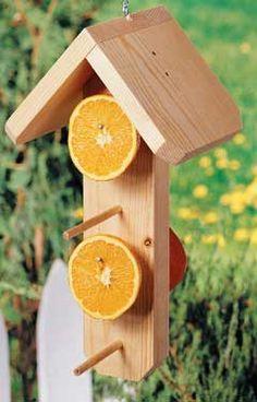 simple diy orange/fruit feeder for birds