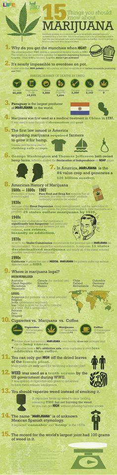 Infographic on Marijuana #weed #cannabis #marijuana #pot