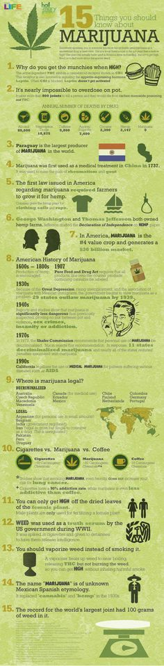 15 Things You Should Know About Marijuana #bud #ganja #reefer #Chronic #kush #hydro #skunk #dope #grass #haze #smoke #herb #trees #cannibis #ifweedwerelegal #legalizeit #weed #pot #hemp #marijuana #stonerfamily #0Deaths #toohigh #legalize #MMOT #mmj #norml #maryjane