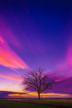 Friday's Sky, Rolf Nachbar
