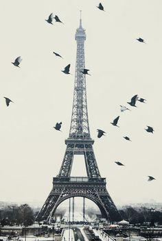 paris-photos-tour-eiffel