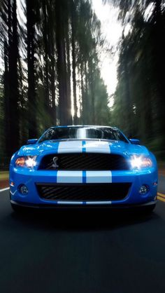 Blue and white cobra mustang