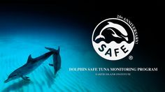 http://www.earthisland.org/dolphinSafeTuna/index.php