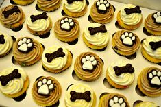 *Puppy Dog Cupcakes by CupcakesCatering.com, via Flickr