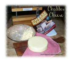 Making your own cheddar cheese