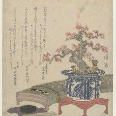 Koto met pruimenbloesem in pot, Keisai Eisen, 1830 - Rijksmuseum
