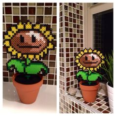 Sun flower from plant vs zombies
