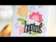 WPLUS9 VIDEO: Intro to Summer Blooms
