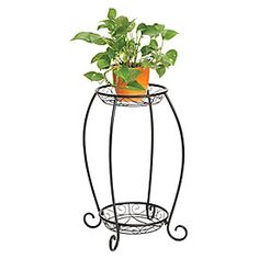 Wilson & Fisher® 2-Tier Wire Plant Stand at Big Lots.