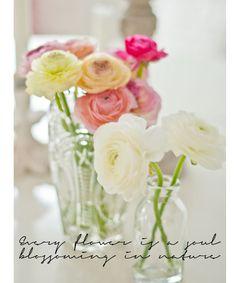 Enkelt och vackert med ranunkel Centerpiece Ideas, Table Centerpieces, Table Decorations, Wedding Bells, Wedding Flowers, Fresh Cuts, Ranunculus Flowers, Dark Pictures, Wedding 2015