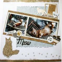 Scrapbook layout pawfect cats