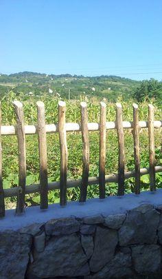 Zulu fakerítés Plants, Garden, Tree, Landscape Projects, Fence, Garden Landscaping, Tree Trunk, Tree House
