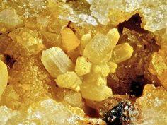Fluorapatit pseudomorphosant Pyromorphite. Lorenz Gegentrum, Halsbrücke, Revier Freiberg, Erzgebirge, Sachsen, Deutschland Taille=3.8 mm Copyright Bebo