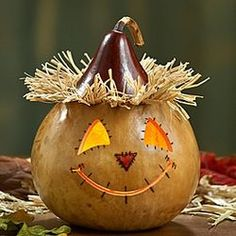 Pumpkin Patch Lighted Gourd