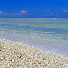 Sanibel Island, Florida- One of the Largest #Seashell #Beaches in the US!
