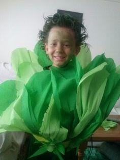 Disfraz de lechuga se puede hacer con un fondo de bolsa verde de disfraces   http://www.multipapel.com/familia-material-para-disfraces-maquillaje-bolsas-de-color.htm