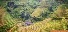 Insightful Vietnam Travel Tips from a Saigon Insider via GranTourismoTravels