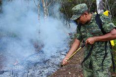 Periodismo sin Censura: CONAFOR reconoce al Ejército Mexicano en su 103 An...