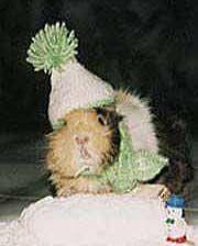 Arschkalt und nicht gestreut: Schneemann bauen, ohne Schneeballschlacht!