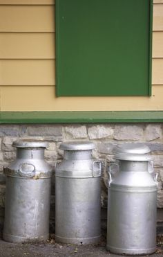 Making homemade cultured milk or buttermilk- great for using in recipes or as a culture in cheese making.