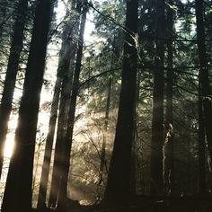 A cidade de Vancouver está localizada em British Columbia que possui grande extensão de rainforest. (Photo by Karina Valeretto)