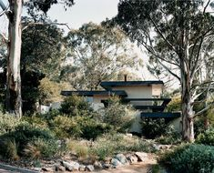 the dingle house canberra - designed by enrico taglietti) is a great example of the late century organic style : . Australian Native Garden, Australian Plants, Australian Homes, Bush Garden, Dry Garden, Garden Shop, Garden Plants, Fresco, Coastal Gardens