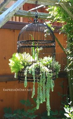 Creative garden containers ideas for unusual planters including boots, metal, wagons, skates, birdcages, junk, and more. #ContainerGarden