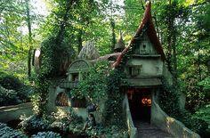 Forest House na Holanda
