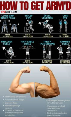 biceps workout If you want to start incorporating arm exercises into your home workout programme but are unsure where to start, weve got just the ticket. These arm workouts are easy, ef Gym Workout Chart, Gym Workout Videos, Chest Workouts, Easy Workouts, Tone Up Workouts, Arm Muscle Anatomy, Workout Posters, Weight Training Workouts, Muscle Building Workouts