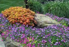 Flowers - traditional - landscape - cleveland - by Enviroscapes