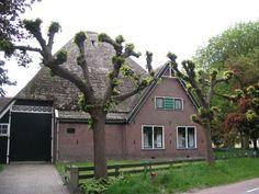 De bijzondere bouwstijl van de stolpboerderij, met het piramidevormige dak dat rust op het vierkant, is één van de belangrijkste kenmerken van West-Friesland. De oudste boerderijen zijn die met een voorhuis met daarachter de eigenlijke stolp.