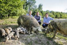 """Nahgenuss: """"Bauern fehlt positives Feedback auf ihr Schaffen"""""""