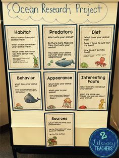 2 Literacy Teachers: Keep on swimming! Keep on swimming! Ocean Animal Research project