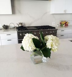 Caesarstone Calacatta Nuvo kitchen counters in a Malibu home. White quartz counters highlighted in a chef's kitchen.