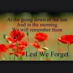 Remembrance Day Poppy, Flanders Field, Anzac Day, Lest We Forget, Military Life, Happy Birthday, Holiday, Poppies, Attitude