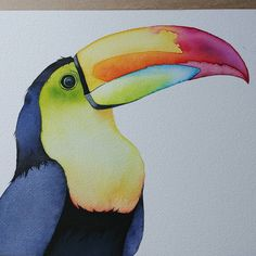 Watercolor bird. Toucan watercolor art by Daisy Del Rosario (@lexo_prints) on Instagram. Prints will be sold soon on Etsy store.