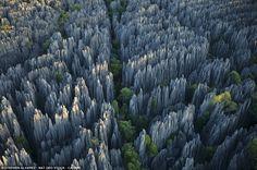 """foresta di pietre appuntite in madagascar -In Malgascio Tsingy si traduce """"dove non si può camminare"""". Il Grand Tsingy è un immensa foresta di pietre del Madagascar occidentale, la più grande del mondo, composta esclusivamente da rocce appuntite. Apparentemente quella distesa di aghi di enormi dimensioni sembra un posto invivibile per qualsiasi specie animale. Ma nel pericoloso labirinto vivono 11 tipi di lemuri. Il Grand Tsingy si è formato grazie all'erosione della roccia calcarea causata…"""