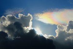 IMG_1593_meitu_2   Flickr – 相片分享!