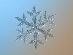 20 lindas fotos de flocos de neve feitas com equipamento improvisado | HypeScience